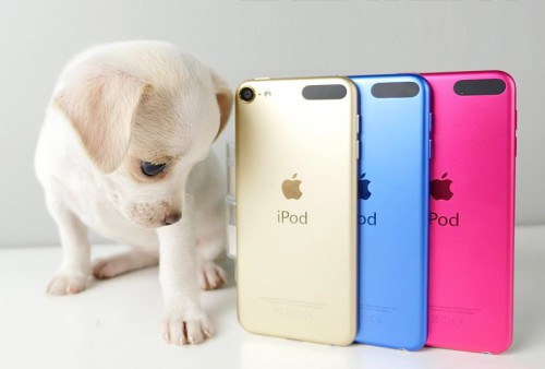 iPod-touch-800x541