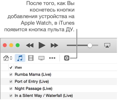 iTunesRemoteButton